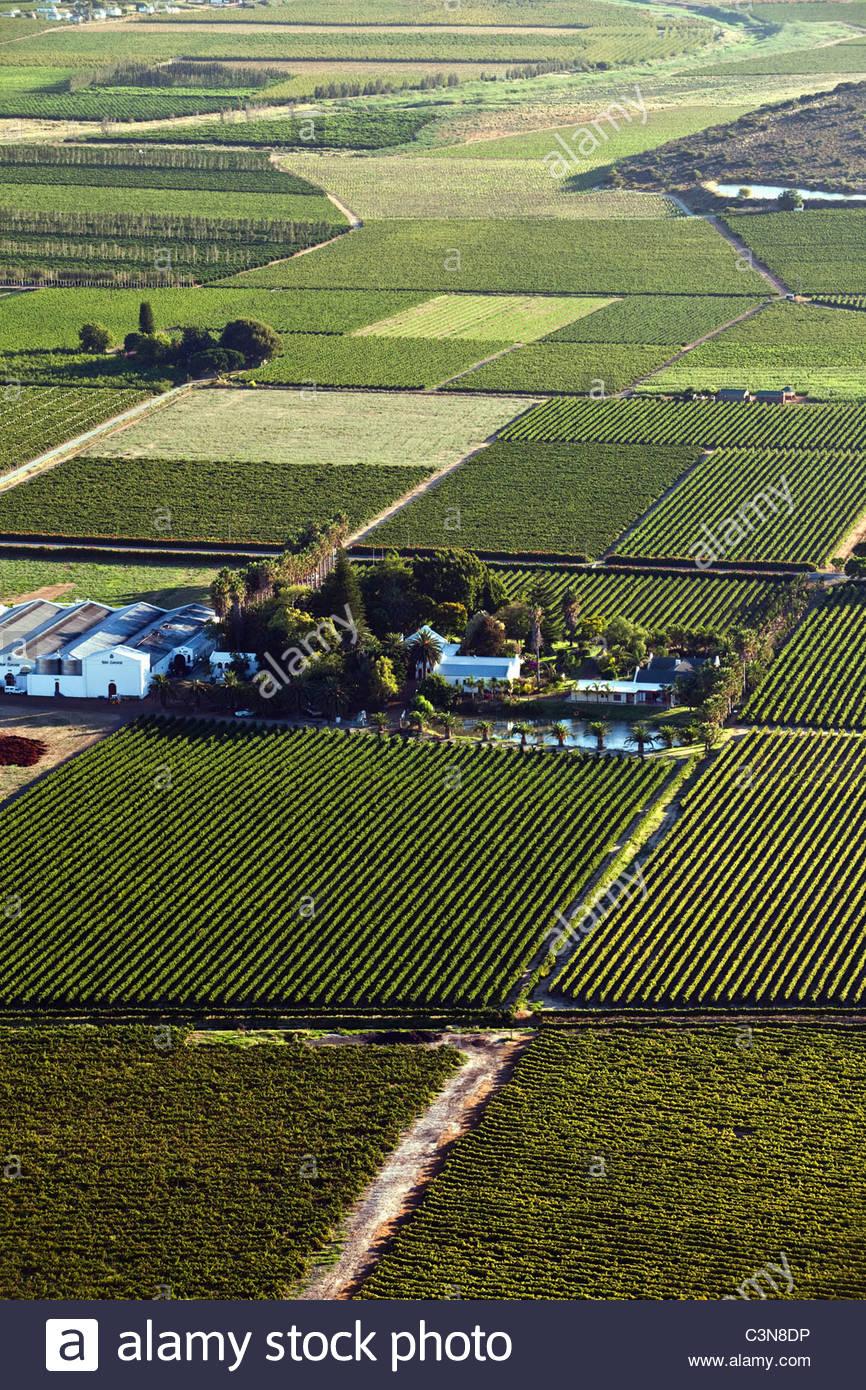 South Africa, Western Cape, Robertson, Robertson Wine Valley. Foreground: Van Loveren Wine estate and vineyards. - Stock Image
