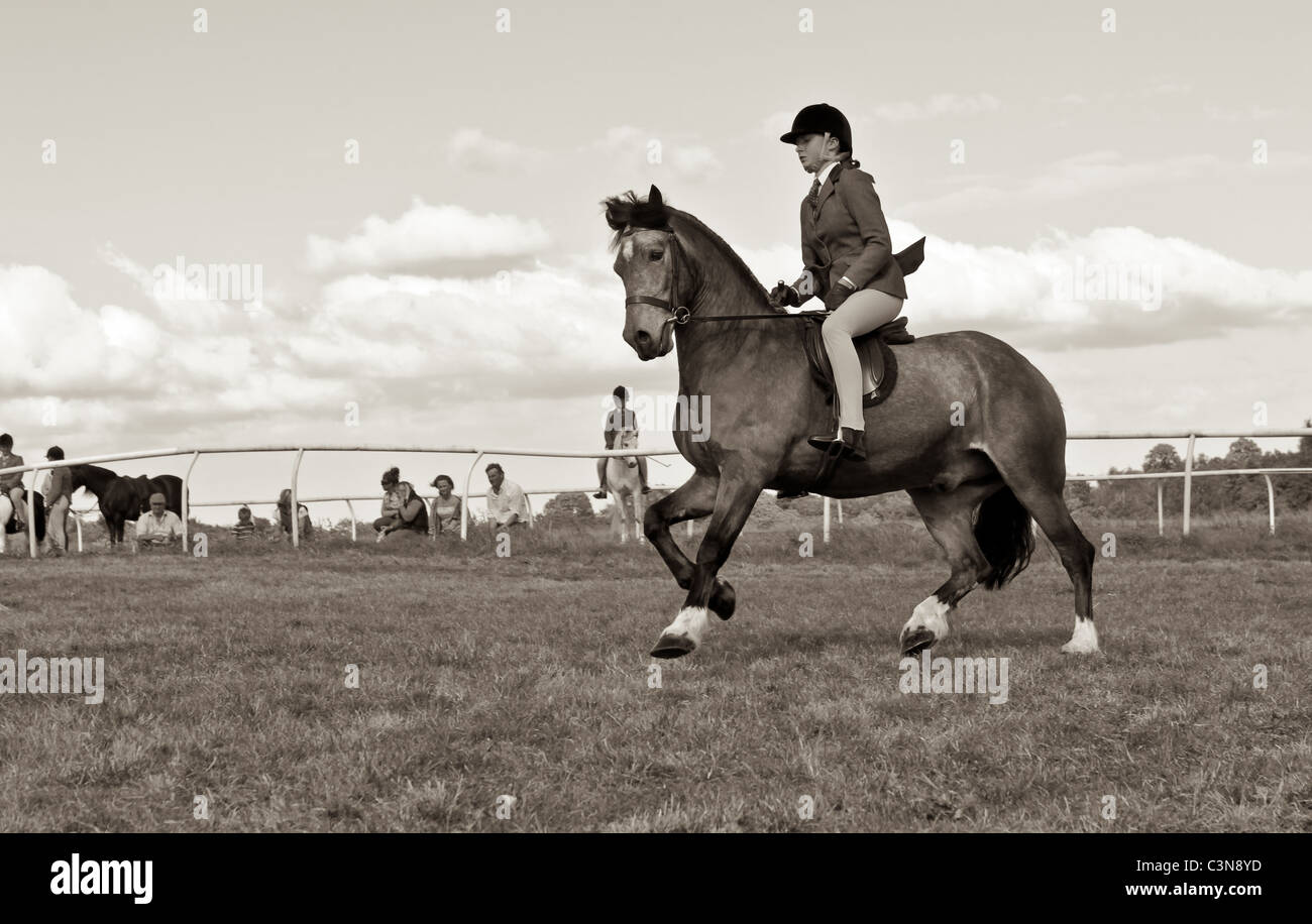 Monochrome image of a jockey riding a cantering horse at the 2011 South Suffolk Show - Stock Image
