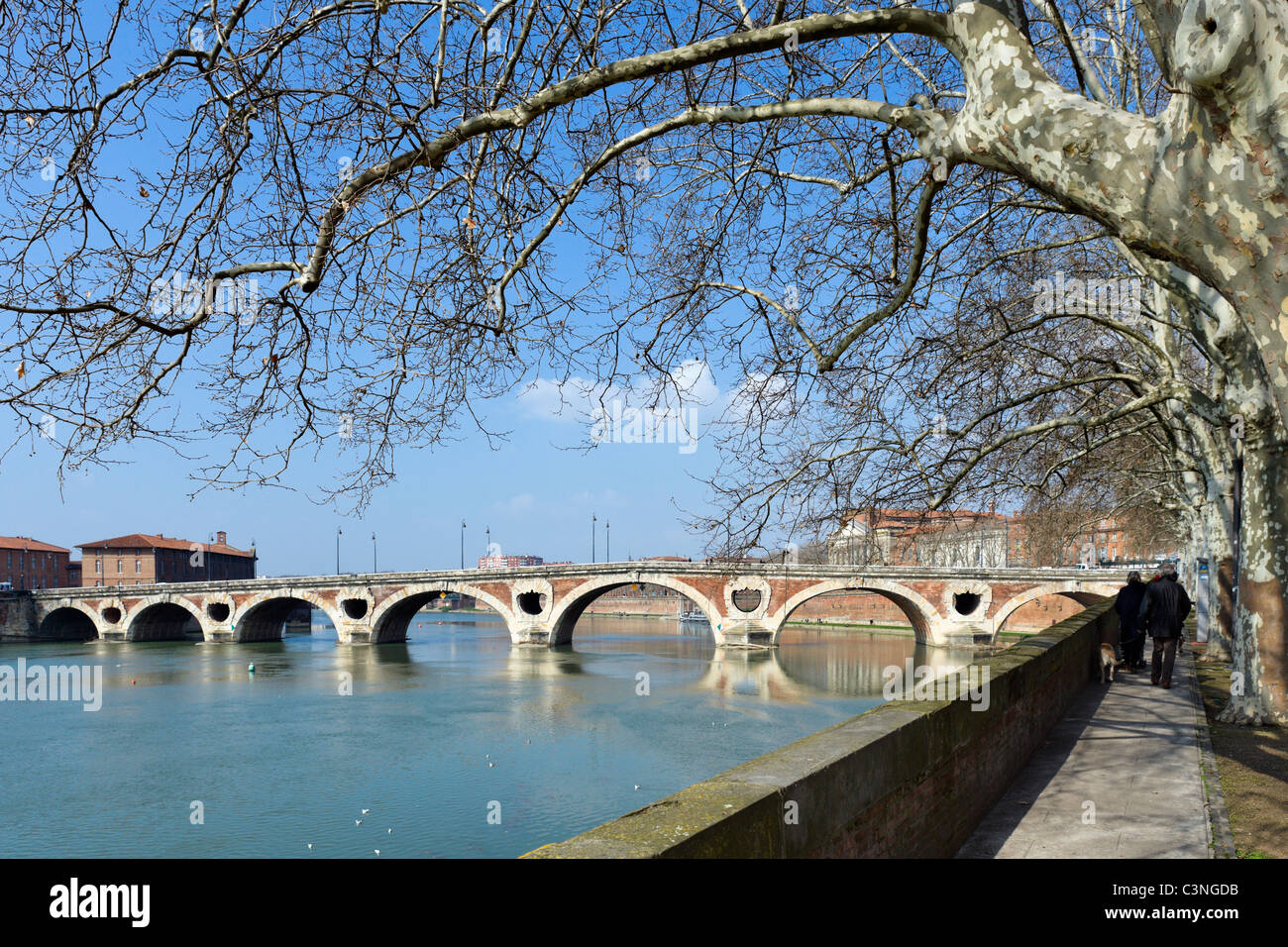 The banks of the River Garonne and the 16thC Pont Neuf bridge, Toulouse, Haute Garonne, Midi Pyrenees, France - Stock Image
