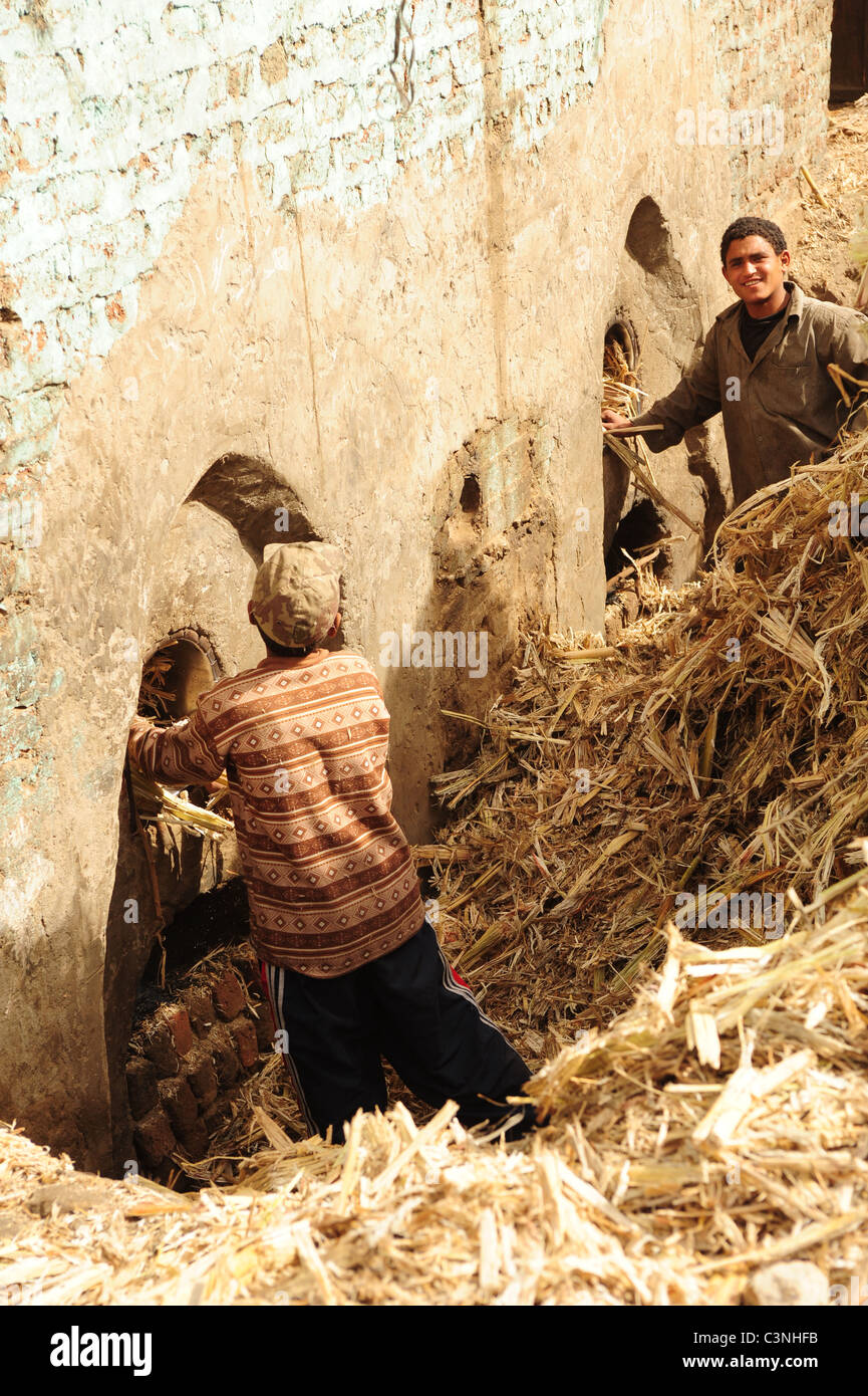Africa Middle East Egypt molasses making using crushed sugar cane - men feeding sugarcane in to ovens - Stock Image