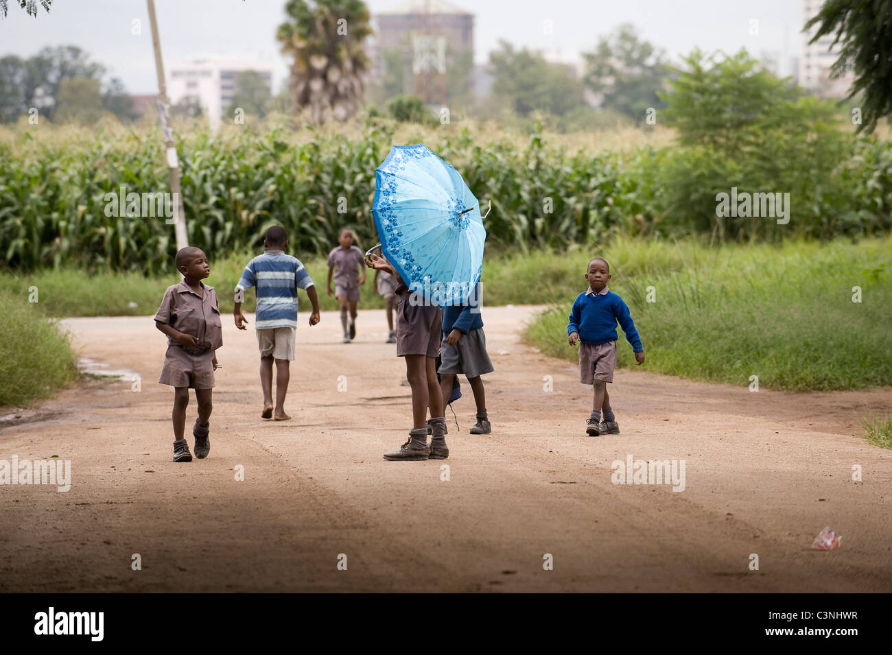 School children playing in the street on their way home from school one has an umbrella. Arcadia, Harare, Zimbabwe. - Stock Image