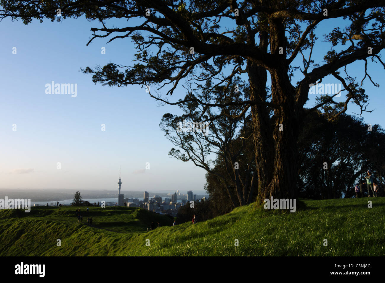 Auckland skyline including sky tower viewed from mt eden, the highest natural point in Auckland. - Stock Image