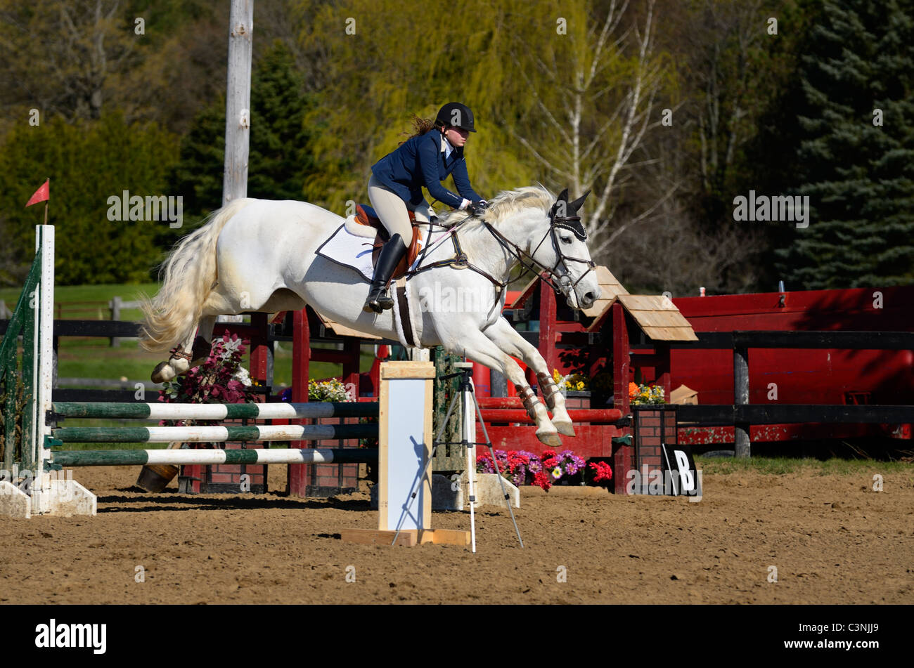 Gray horse and teen rider sailing over a jump at an outdoor equestrian competition - Stock Image