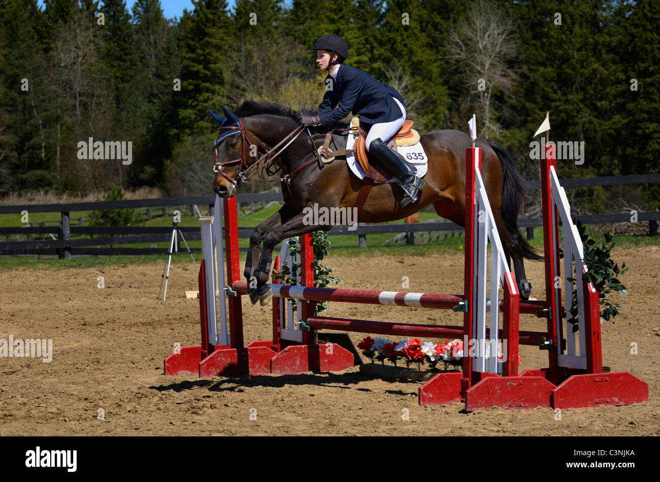 Teen horse rider jumping over a ramped oxer fence at an outdoor equestrian show competition Ontario - Stock Image
