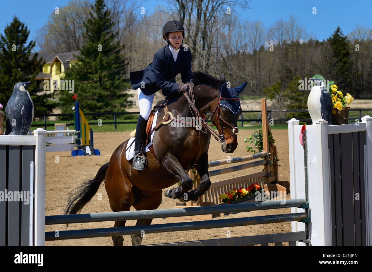 Teenage girl taking off on her thoroughbred horse over a jump at an outdoor equestrian show competition Ontario - Stock Image