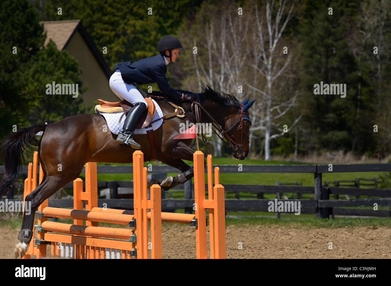 Thoroughbred horse rider jumping over an oxer fence at an outdoor equestrian show competition Ontario - Stock Image