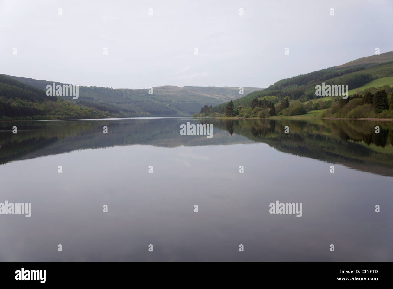Talybont Reservoir and Forest. Near Talybont on Usk, Brecon Beacons, Wales UK 110754_Brecon-Walk - Stock Image