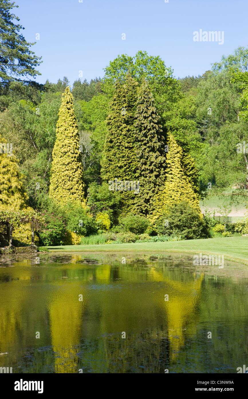Lake at Coverwood Farm, Surrey, UK. - Stock Image