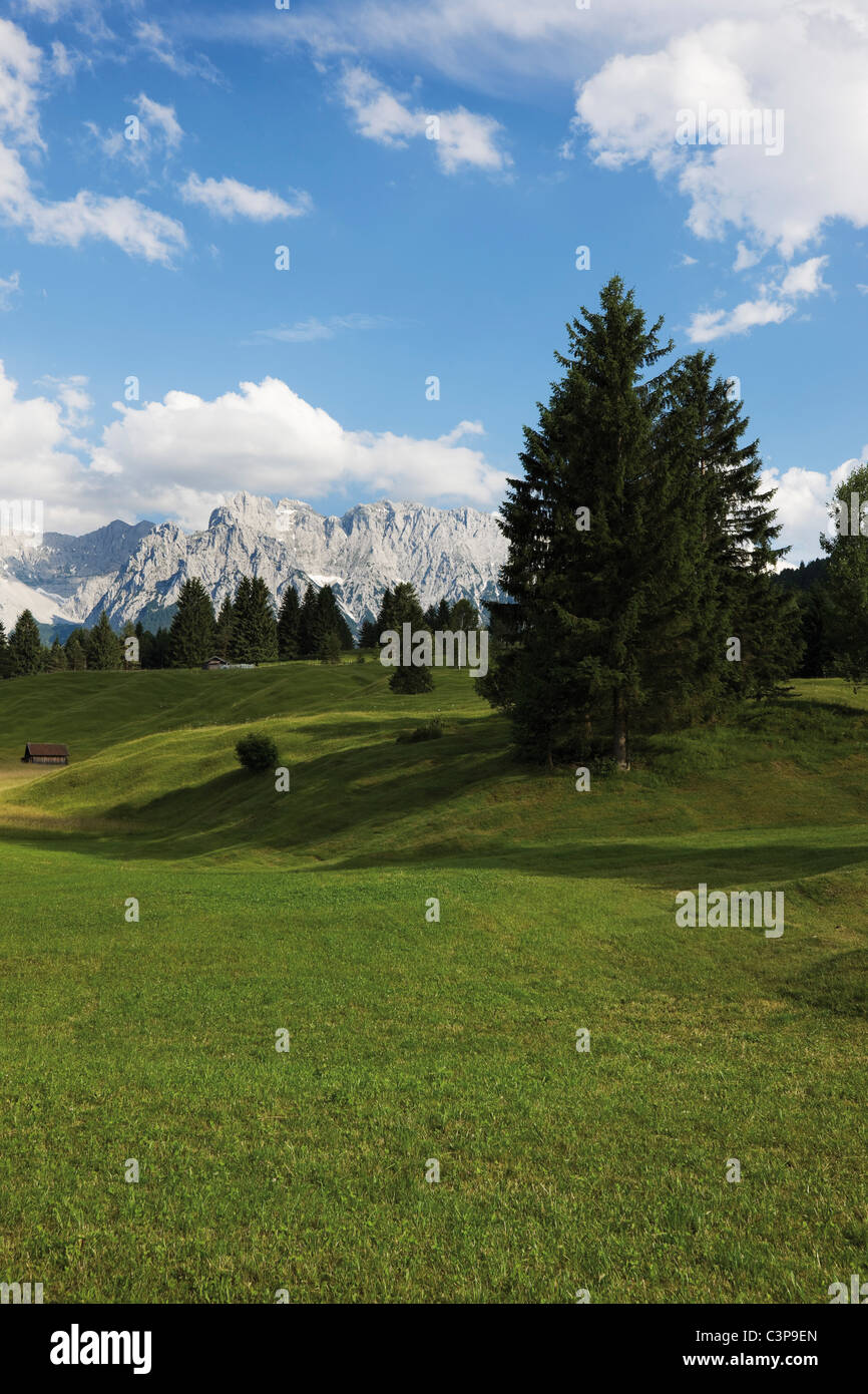Germany, Bavaria, View of hump-meadows with karwendel mountains in background - Stock Image