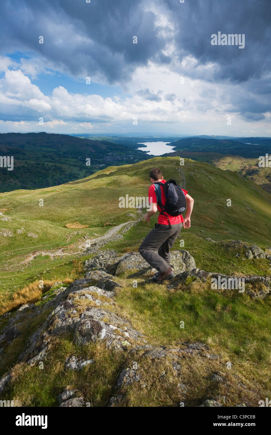 Caucasian Male descending Heron Pike with Windermere in the Distance. Lake District National Park. Cumbria. England. - Stock Image