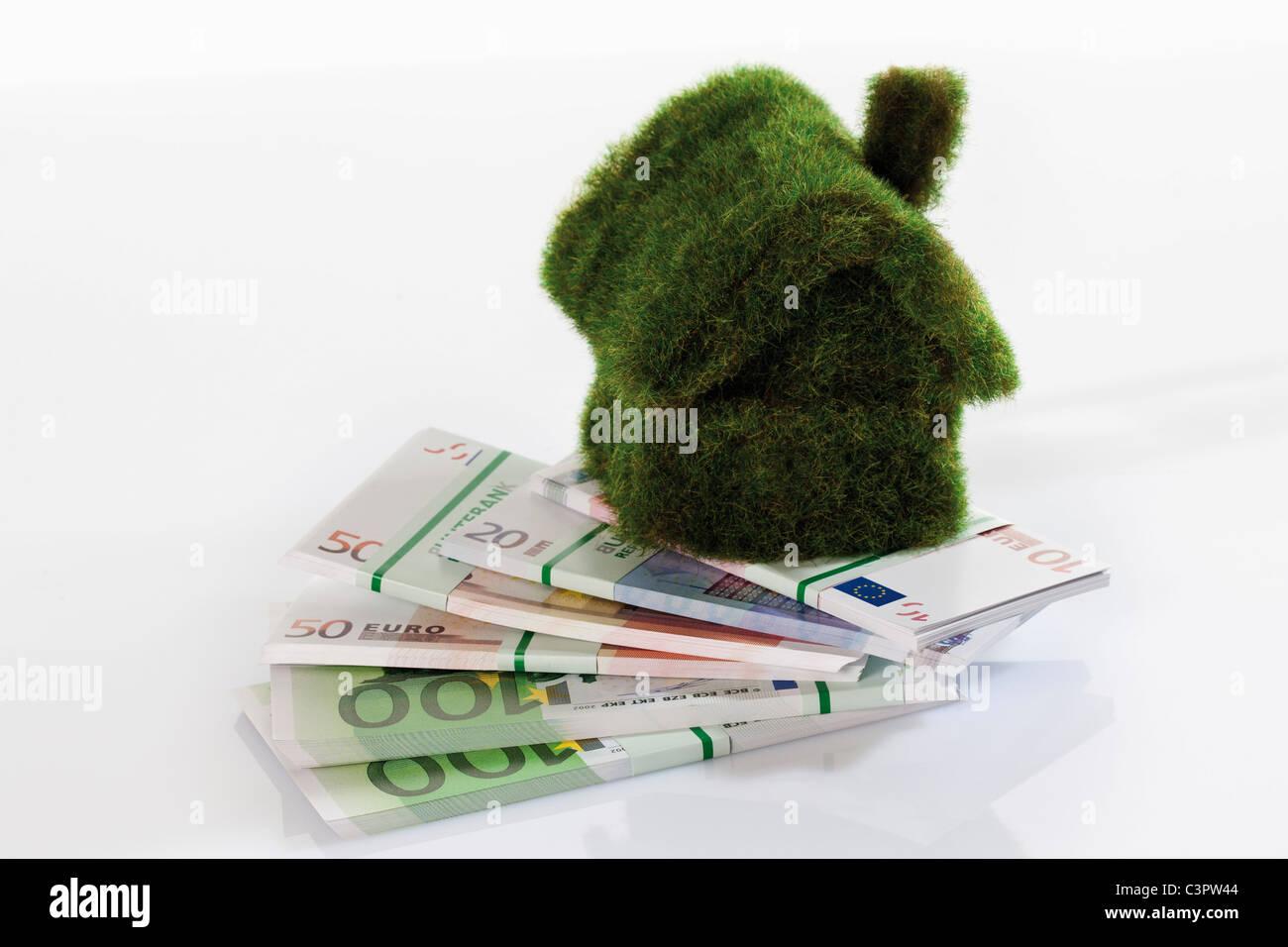 Eco-house on bundles of euro notes, close up - Stock Image
