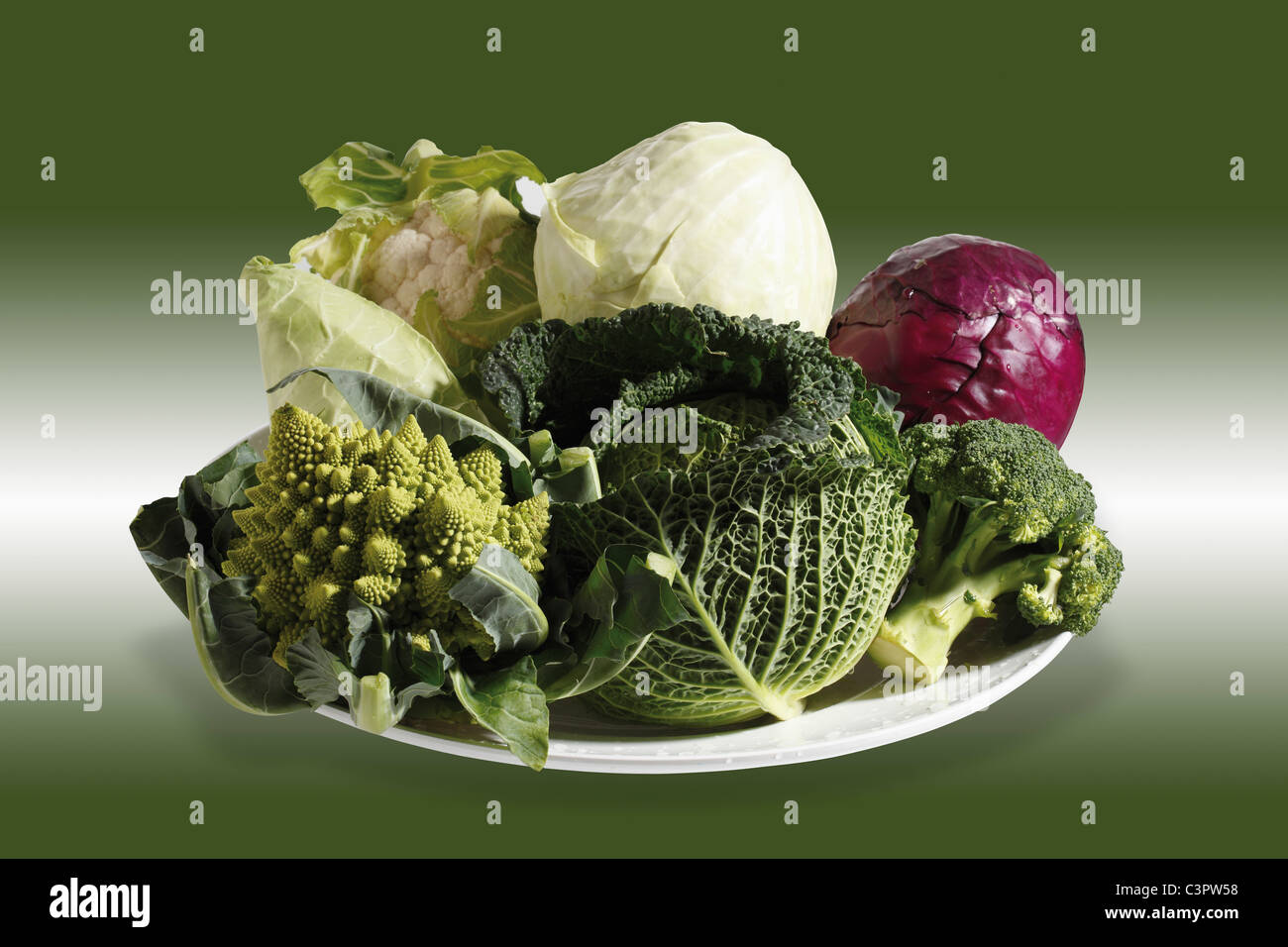 Variety of cabbage in plate against coloured background - Stock Image