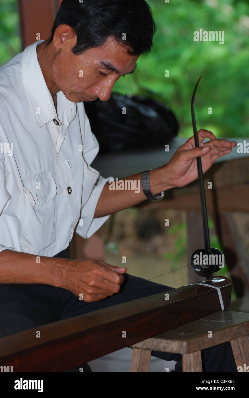 Musician playing the Vietnamese dan bau (one-stringed zither) - Stock Image