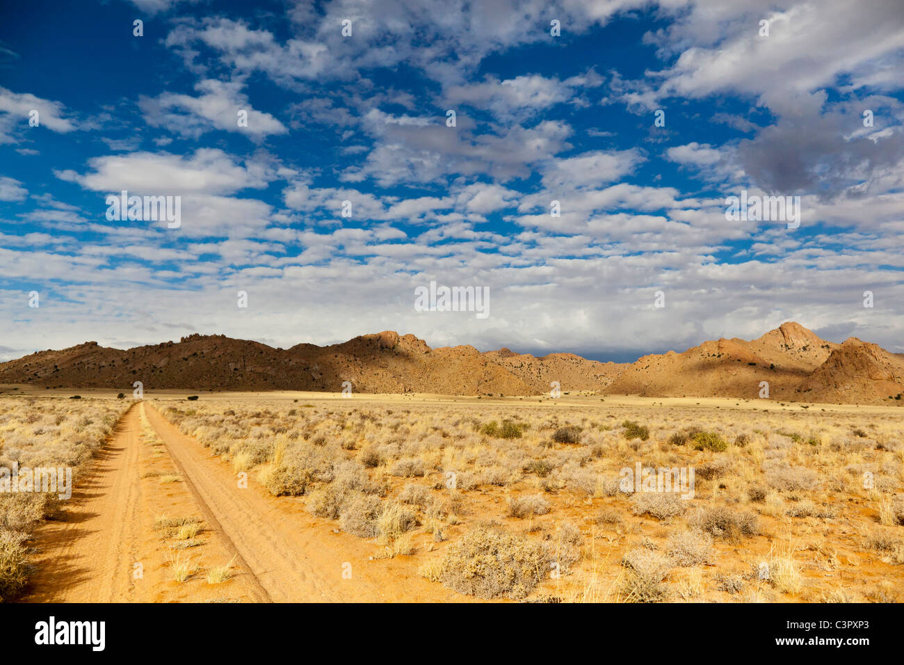 Africa, Namibia, Namib Desert, Track in Gondwana through through Namib Naukluft National Park - Stock Image