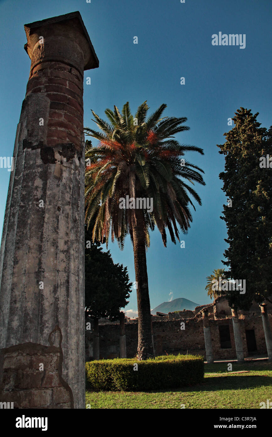 ancient roman column and a palm with the vesuvio volcano in the background - Stock Image