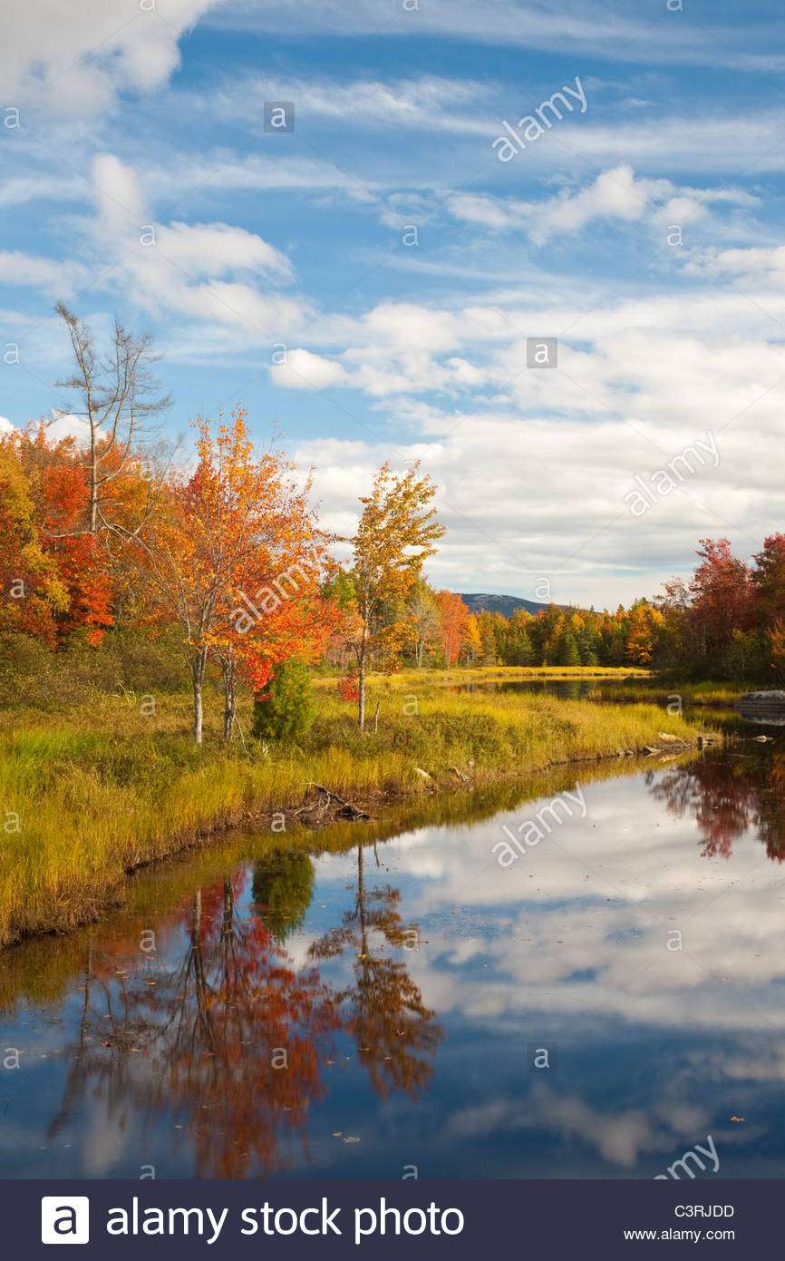 Autumn view of Northeast Brook near Acadia National Park, Bar Harbor, Maine USA - Stock Image