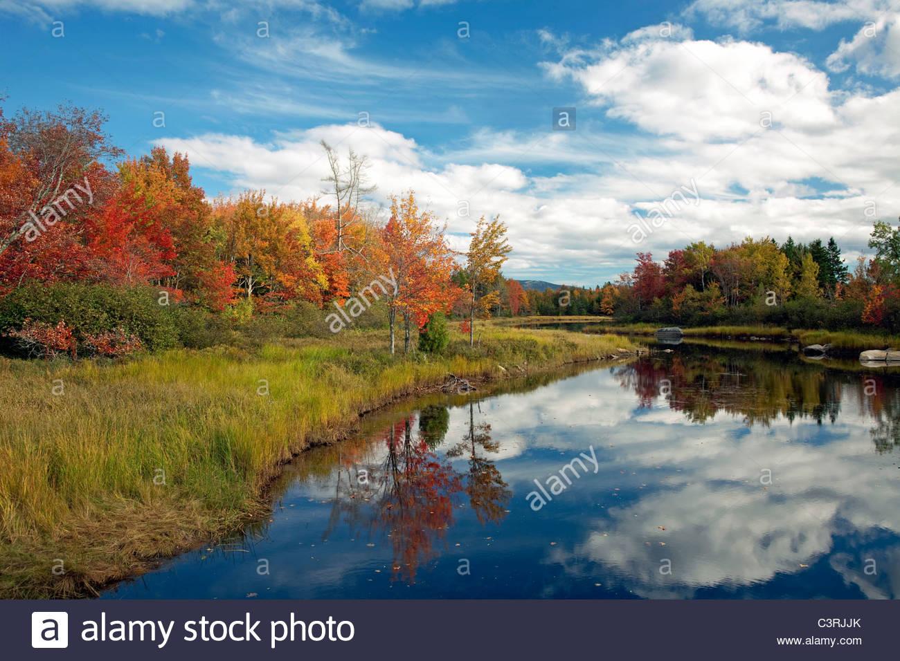 Fall view of Northeast Brook, Bar Harbor, Maine, USA - Stock Image