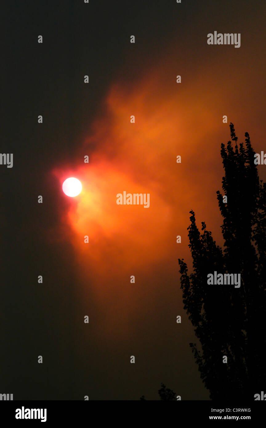 Evening sun through wildfire smoke during the 2003 wildfire season in western Montana - Stock Image