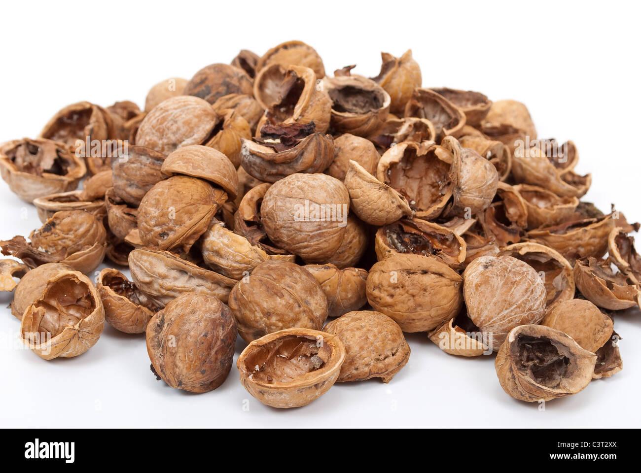 Walnut shell - Stock Image