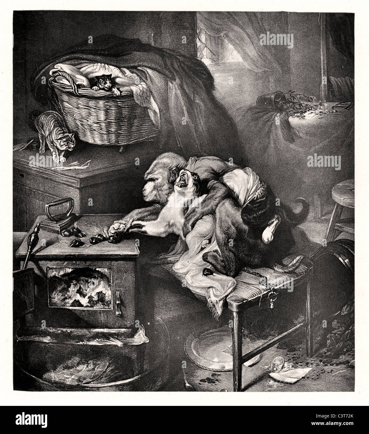 The Cat's Paw by Edwin Landseer derived from La Fontaine's fable, 'The Monkey and the Cat'. - Stock Image