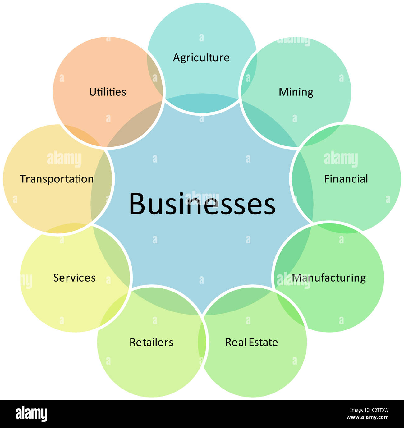 business types diagram management strategy concept chart illustration
