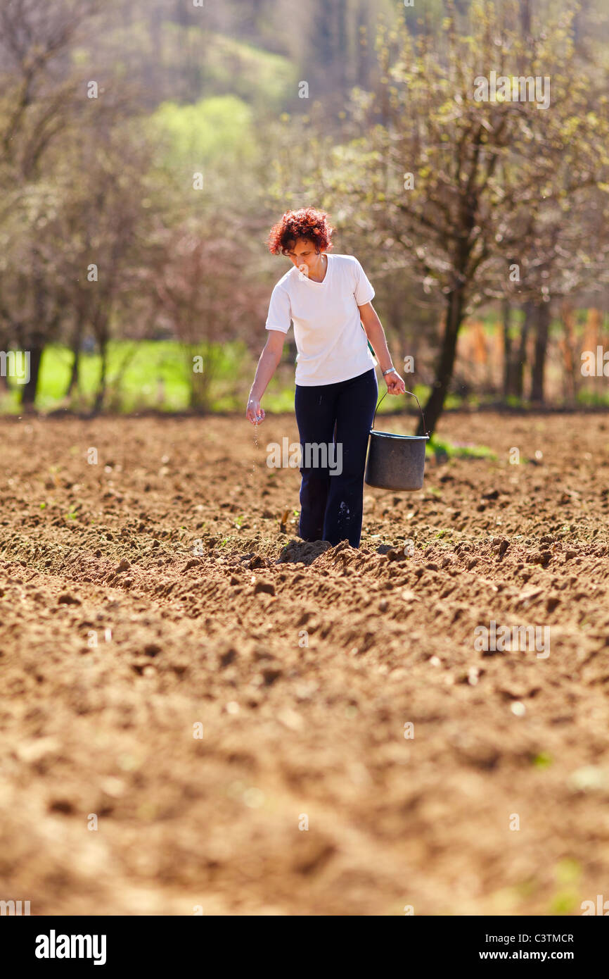 Young woman farmer planting seeds mixed with fertilizer from a bucket - Stock Image