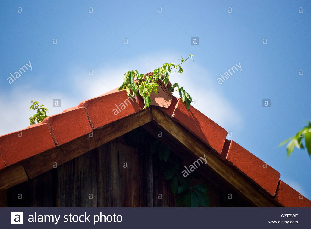 Old wooden barn Bavaria Germany - Stock Image