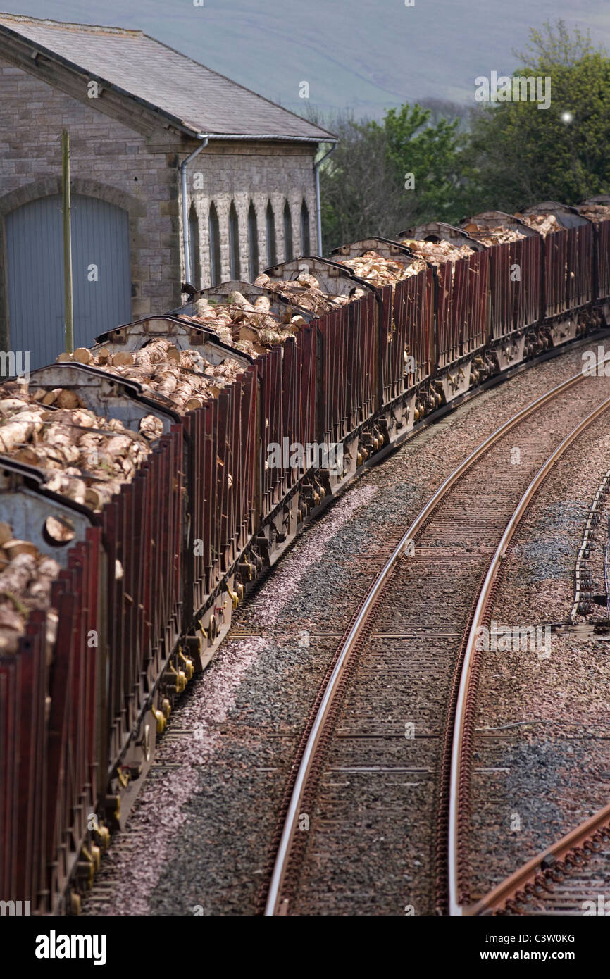 Wood logs carrying Freight, Timber log Train Carriages Southbound Settle- Carlisle line at Kirby Stephen Railway - Stock Image