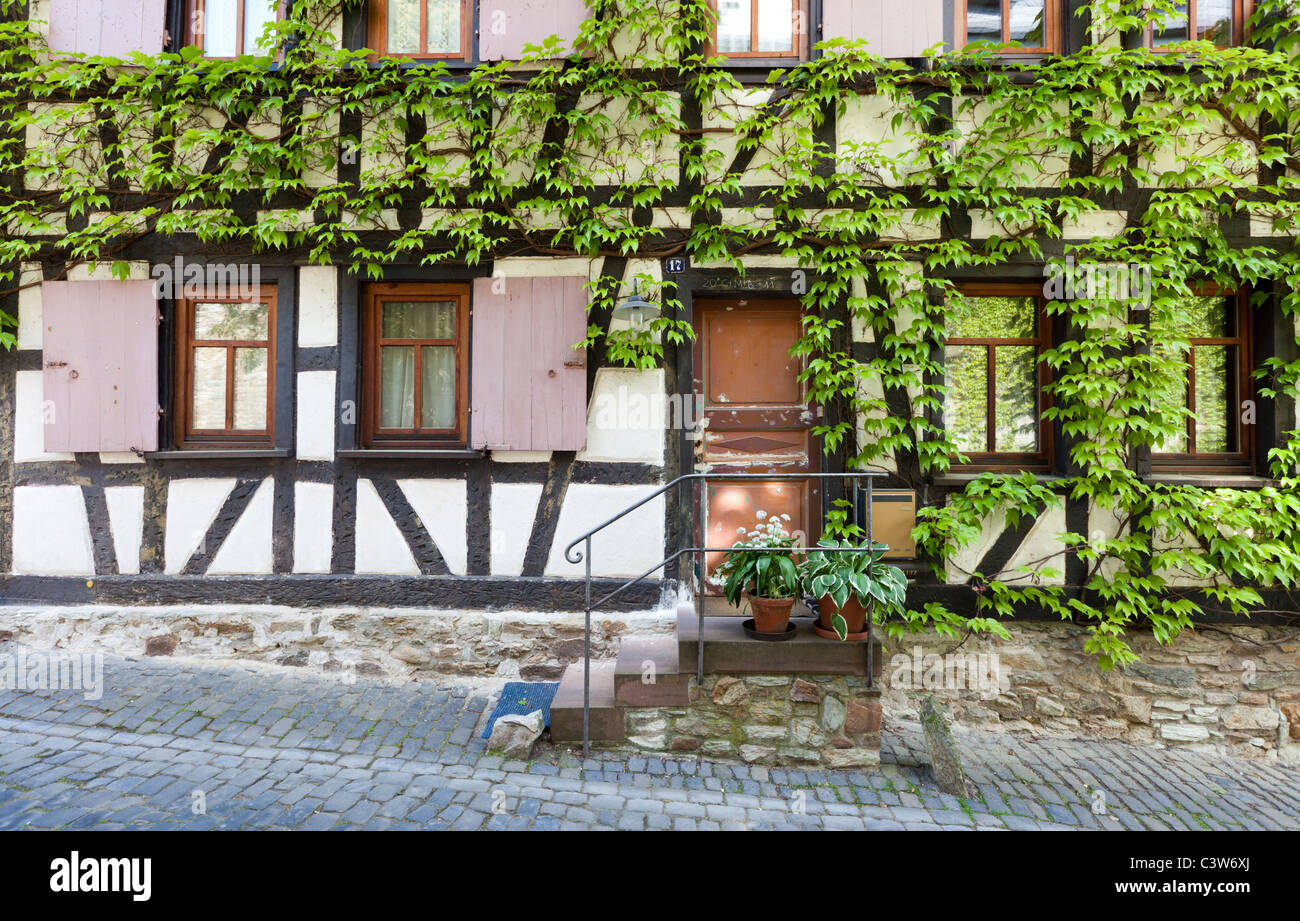 An historical Fachwerk house (Half Timbered) covered in vines in the beautiful town of Kronberg, near Frankfurt. - Stock Image