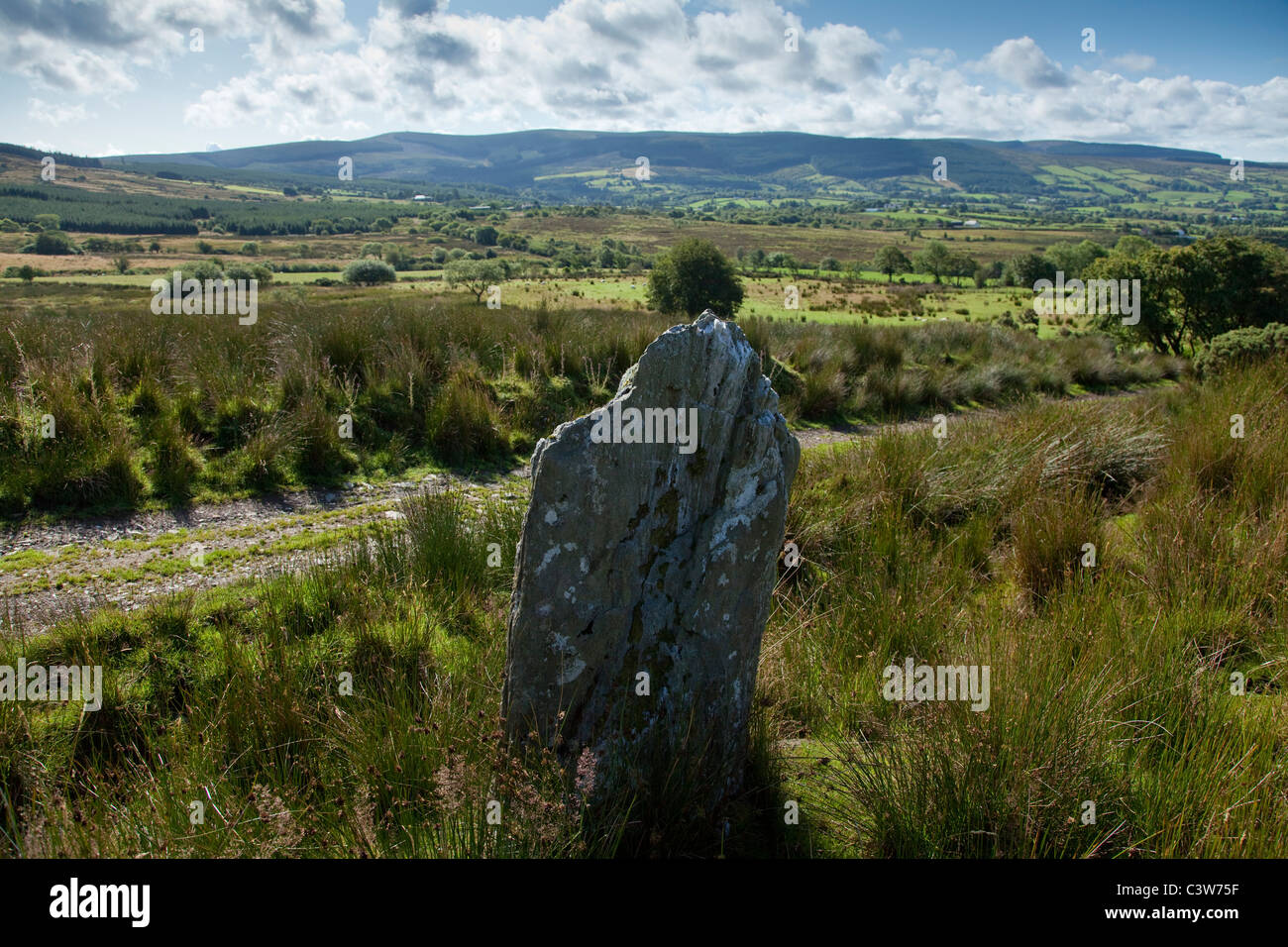 Standing stone near Eskradooey, Robbers Table, County Tyrone, Northern Ireland. Stock Photo
