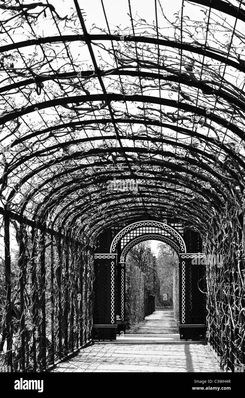 lonely arcade walk in a beautiful garden, black and white - Stock Image
