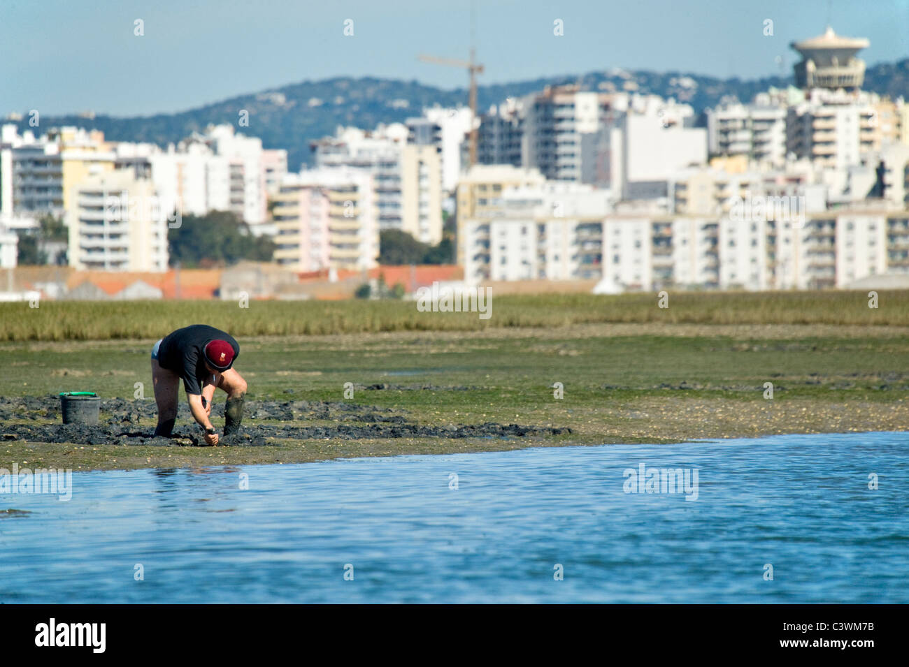 Collecting shellfish on the Ria Formosa with Faro as backdrop , Algarve , Portugal - Stock Image