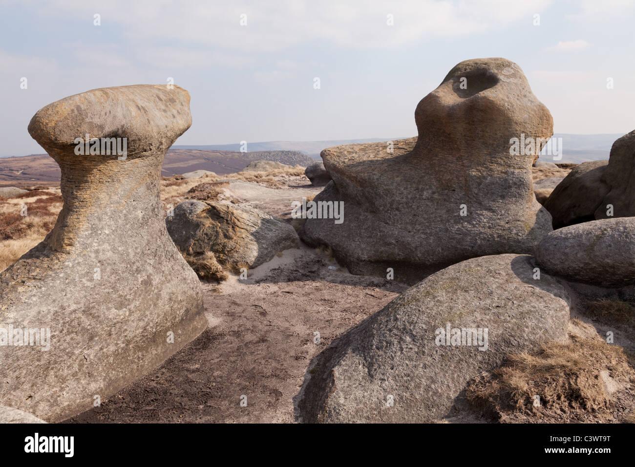 Bleaklow stones in the Dark Peak part of the Peak District Nation Park, Derbyshire,UK - Stock Image