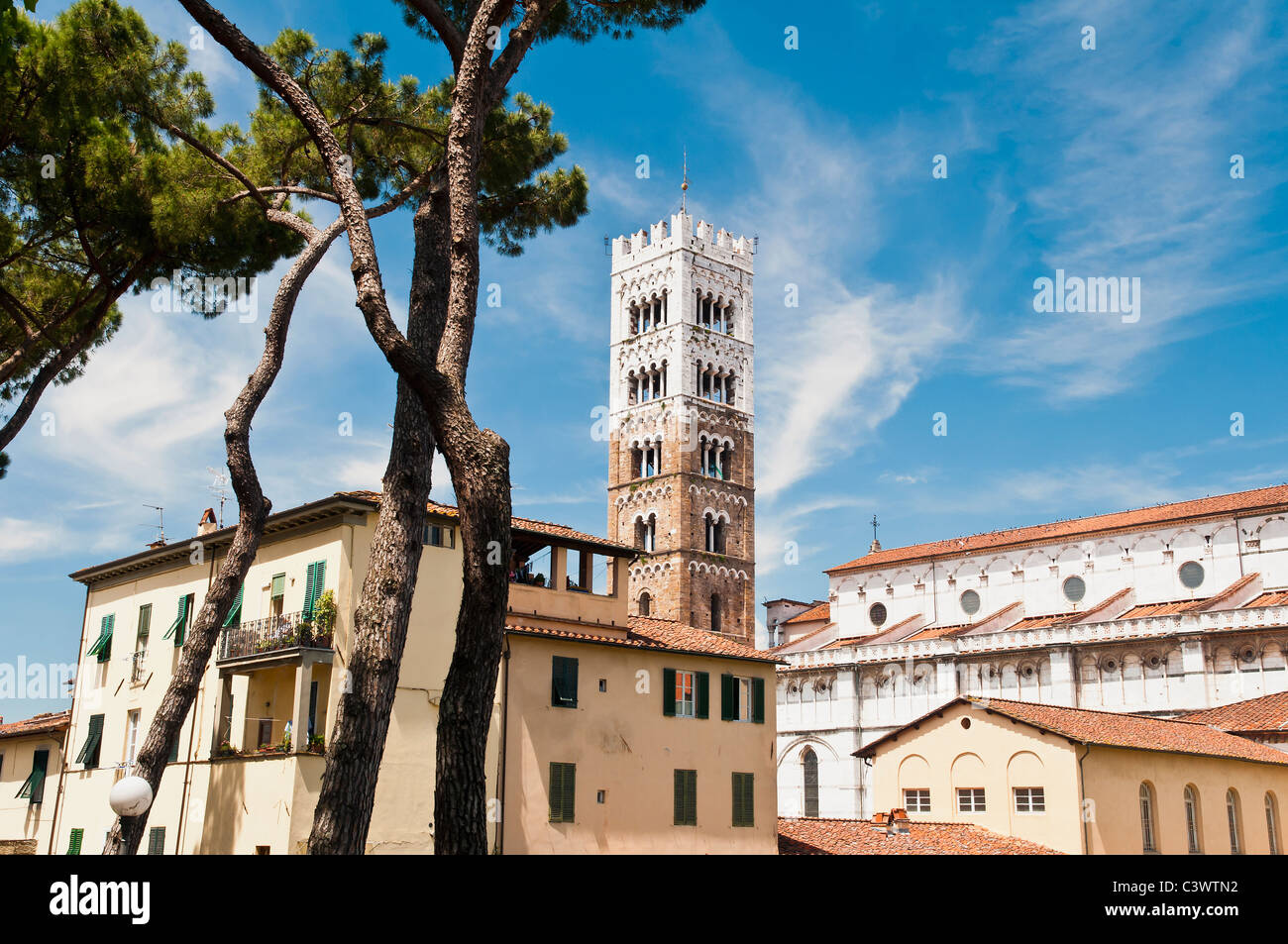 The medieval bell tower of St Martin cathedral, Lucca, Tuscany, Italy - Stock Image