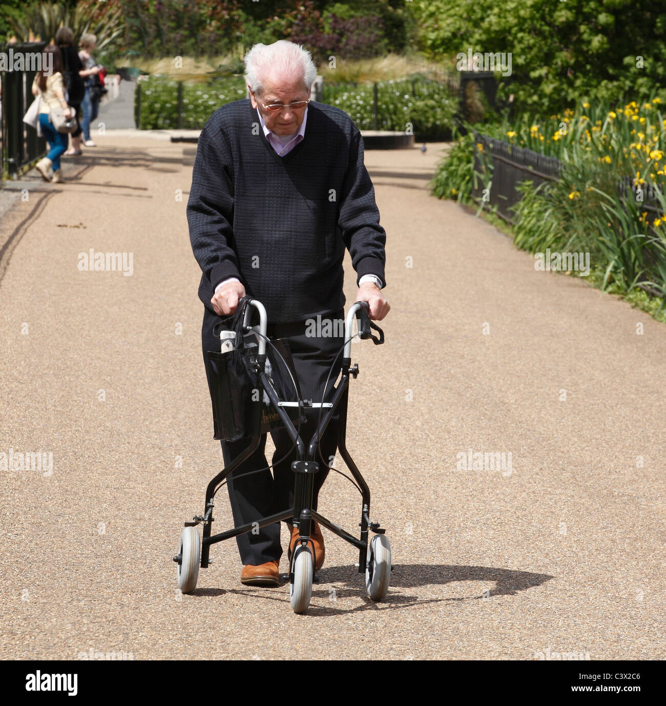 Elderly Senior citizen walking with a frame in the park. - Stock Image