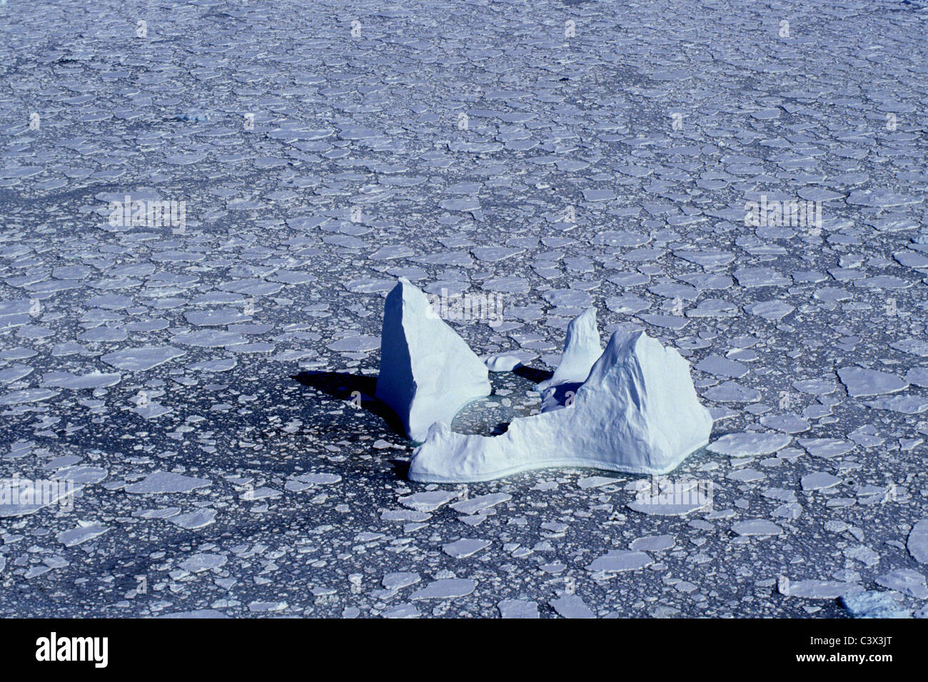 Antarctica. Landscape. Aerial of floating iceberg and pack ice. - Stock Image