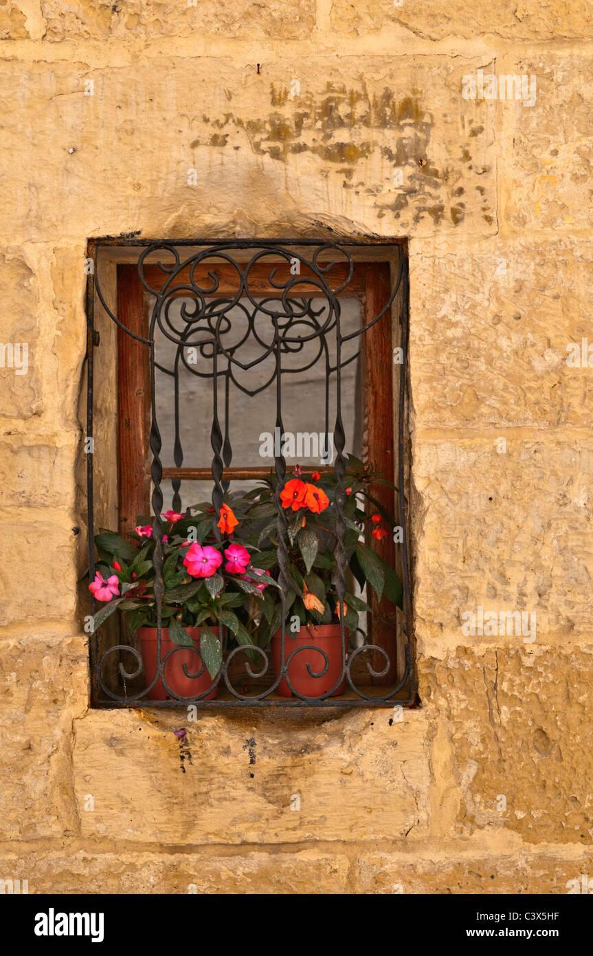 Flowers in window Vittoriosa Valletta Malta - Stock Image
