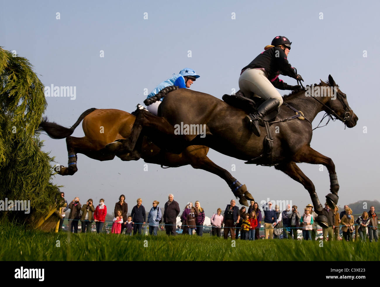 2011, Horse Racing, Isle of Wight, Grand National, Scurry, Ashey, Ryde, UK Stock Photo