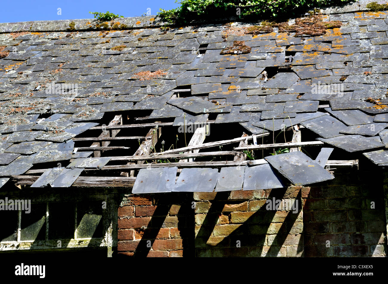 Derelict stable - Stock Image