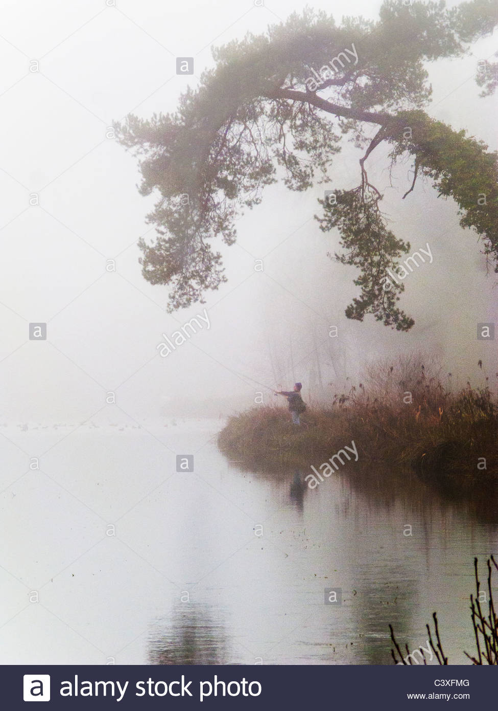 Person fishing on foggy riverbank - Stock Image
