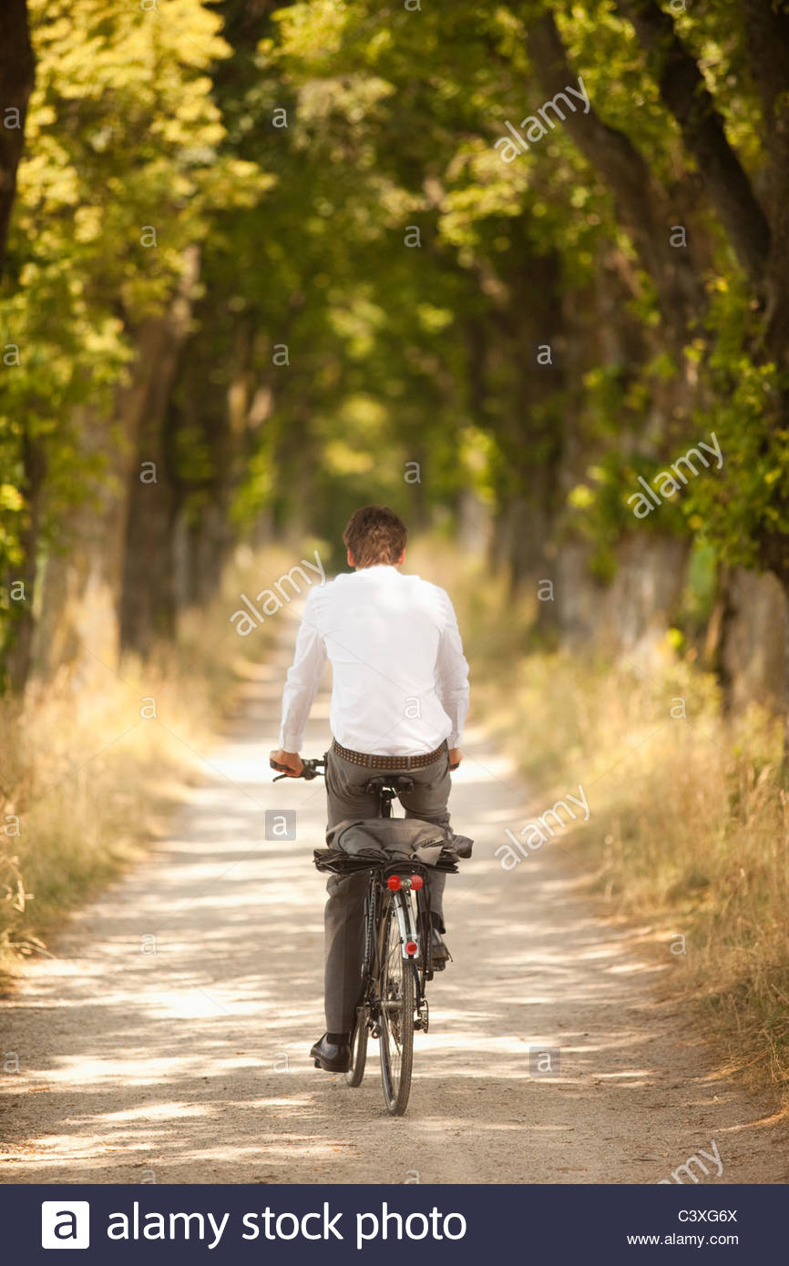 Rear view of young businessman riding along tree-lined road on bicycle - Stock Image