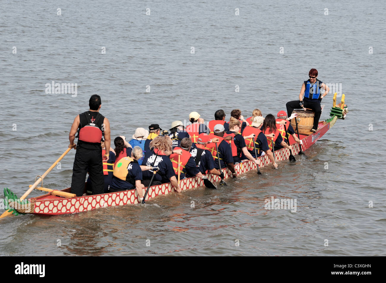 Dragon boaters rowing to starting position - Stock Image