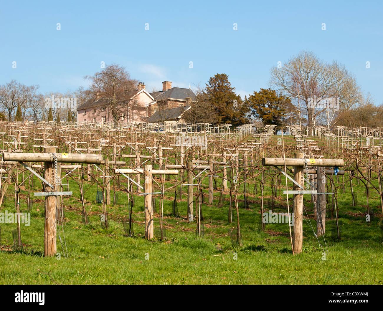 Bois Flotté Pour Pergola ancre stock photos & ancre stock images - alamy