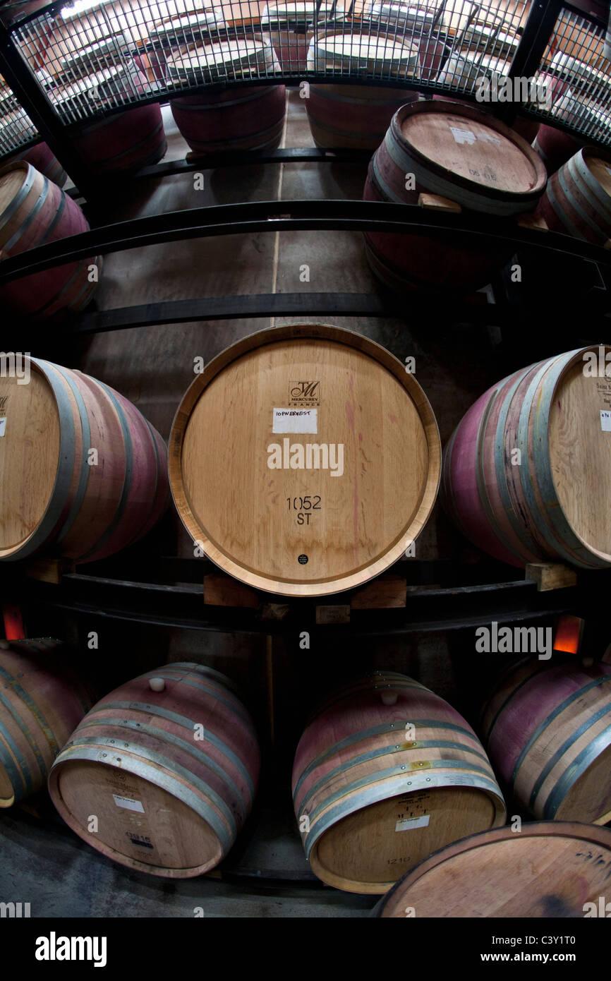 Barrels at the Ata Rangi winery in Martiborough, New Zealand, illustrating barrel distortion from a fisheye lens - Stock Image
