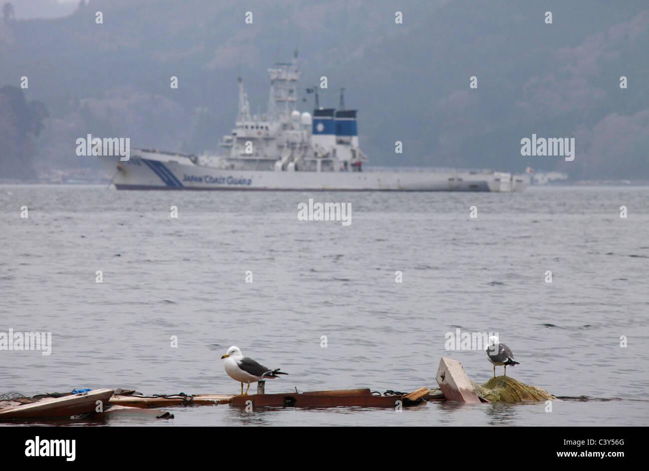 Sea birds on floating wreckage Japan Coast Guard ship PL-02 Erimo background Otsuchi-cho town Iwate Japan - Stock Image