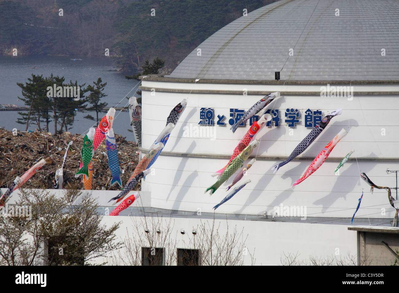 Carp streamers flying at the Whale Museum flying in Yamada-machi town Iwate Japan - Stock Image