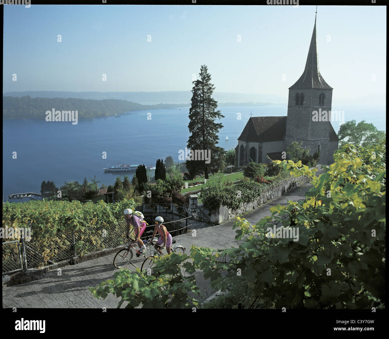 Ligerz, church, vineyards, cyclists, Velofahrer, Velo, bicycle, bike, shoots, wine, Bielersee, lake, sea, scenery, - Stock Image