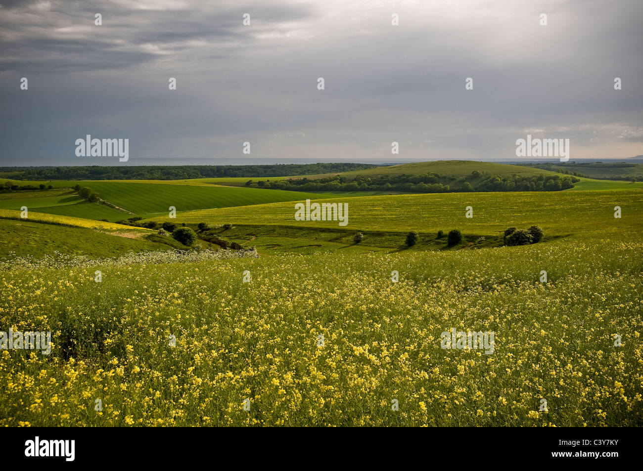 Harrow Hill from the South Downs Way, West Sussex, UK - Stock Image
