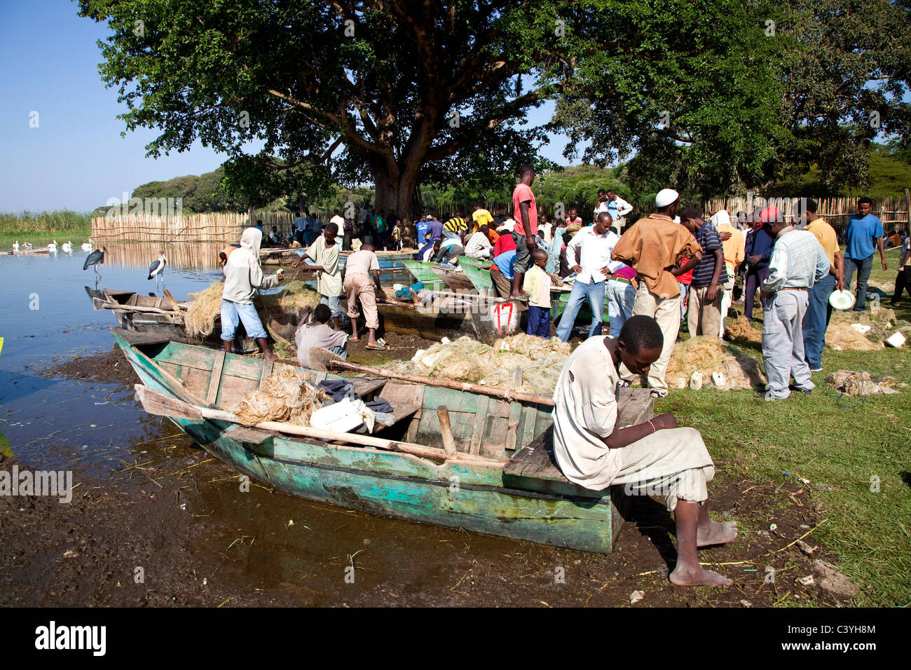 fish market and fishermen, lake awasa, ethiopia, africa - Stock Image