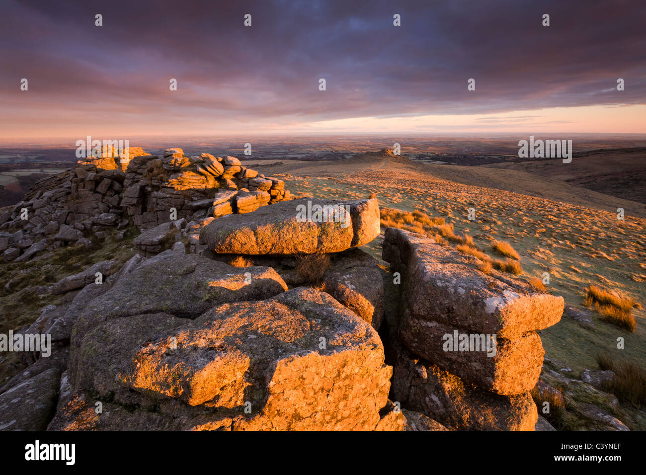 The first rays of early morning sunlight bathe Higher Tor in a rich glow, Belstone Common, Dartmoor National Park, - Stock Image
